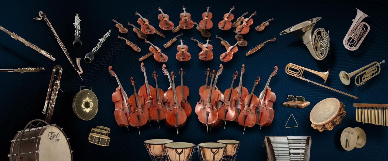Vienna Symphonic Libraray